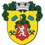 Logo města Vodňany