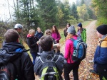 Wildniscamp day 3 (2).JPG