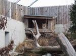 Zoo Rallye (89).JPG